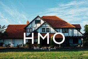 What is an HMO?